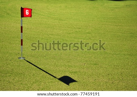 Flag and Flagstick with Shadow on a Golf Course Practice Green