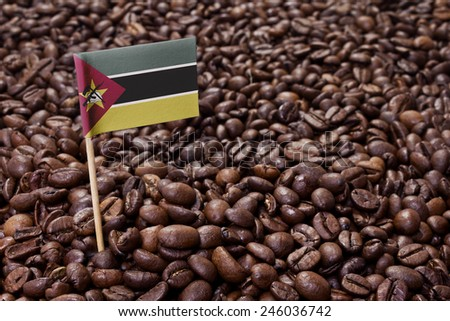 Flag of Mozambique sticking in roasted coffee beans.(series) - stock photo