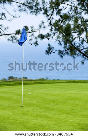 Flag on the green overlooking the ocean - stock photo