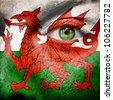 Flag painted on face with green eye to show Wales support - stock photo