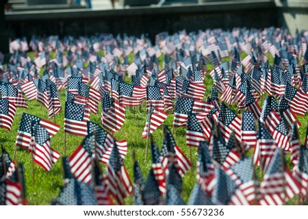 Flags from United States fill a grassy area for Fourth of July or Memorial Day.