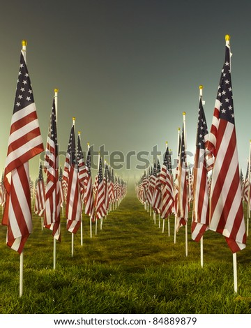 Flags set in a row as part of the healing fields for 9/11/2011 in Grand Rapids Michigan. Each flag was designed to represent a person who died in the terrorist attacks on 9/11/2001.