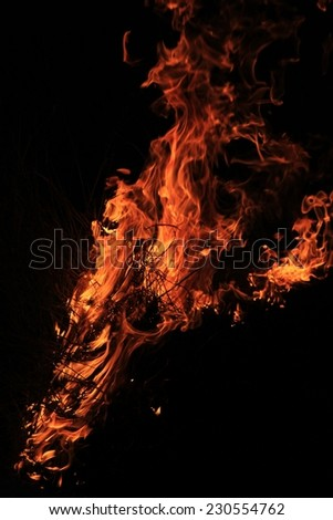 Flame and Fire Background - Management Tool or Destructive Force - Colorful Heat