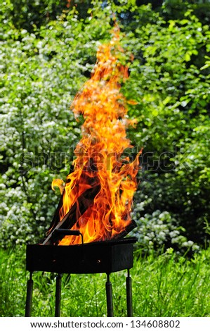 Flames burning in a barbecue standing in a pretty garden as the coals are prepared for grilling an array of meat for a lunchtime cookout .Burning wood and coal in fireplace . - stock photo