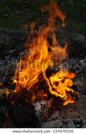 flames of a campfire  - stock photo