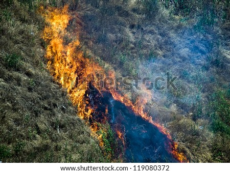 Flames of fire - burning dry grass on the hillside. A strong wind the fire quickly burns dry grass, leaving behind a black ash and smoke. - stock photo