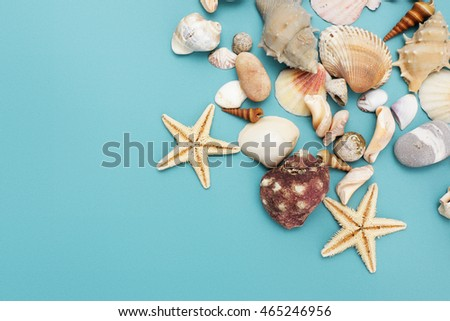 Flat lay. Top view. Frame of shells of various kinds on a blue background. Seashells and starfish on a pastel background. Vacation concept