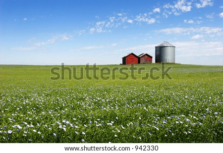 Flax field and silo - stock photo