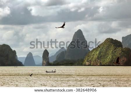 Flight of a sea eagle against mountains - stock photo