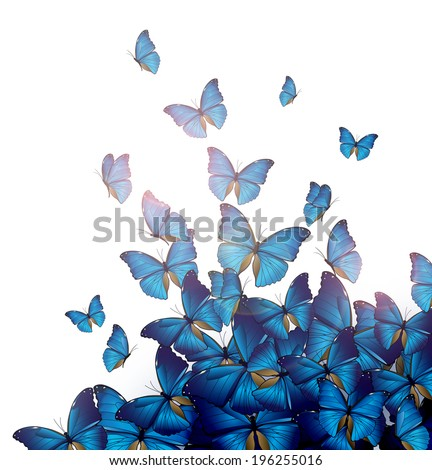Flight of blue butterflies