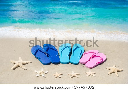 Flip flops and starfishes on the sandy beach by ocean - stock photo