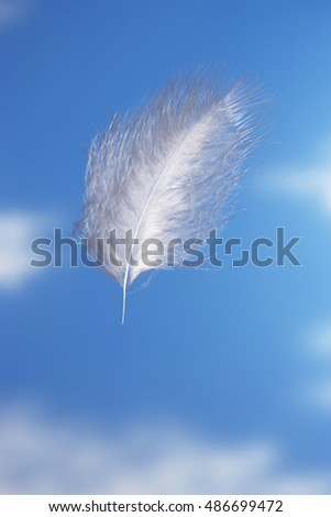 Floating Feather in the clouds