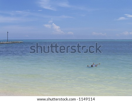 floating in the ocean off the shore of belize - stock photo
