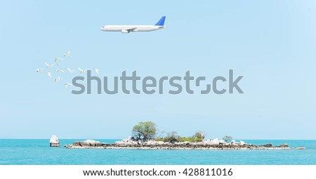 flock of birds forming arrow shape with airplane on blue sky above the sea