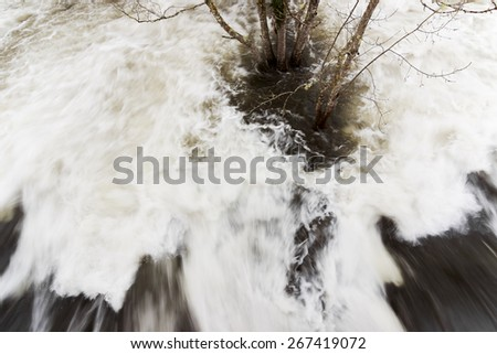 flood in the river with tree in A Corunna, Spain  - stock photo