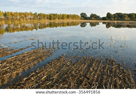 Flooded arable land caused by heavy rains; Agricultural landscape in autumn; Possible effects of climatic change - stock photo