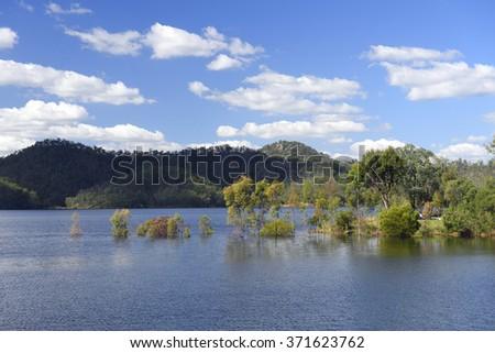 Flooded trees in Wivenhoe dam, Northern Brisbane, Australia - stock photo