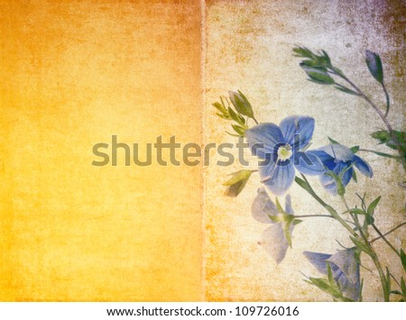 floral background and design element