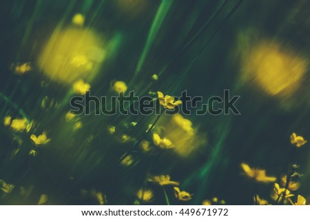 Floral background blurred - stock photo