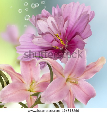 Floral background.Spring Nature