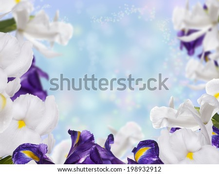 Floral Border with Iris Flower - stock photo
