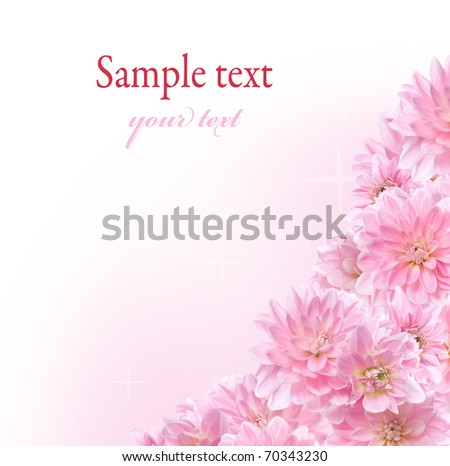 Floral border with pink Dahlia on white background - stock photo