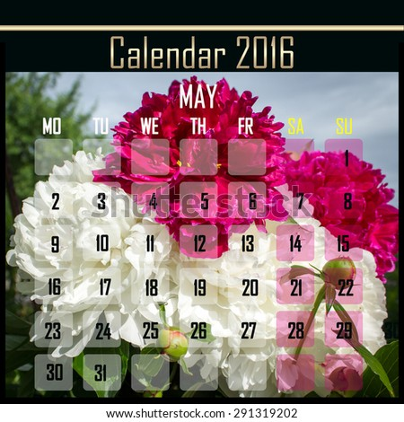 Floral 2016 calendar design for may month - stock photo