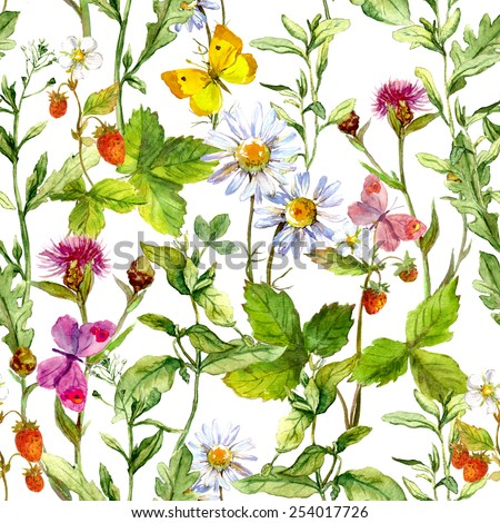 Floral field with wild herbs, strawberry and meadow flowers. Retro seamless pattern. Vintage watercolor - stock photo