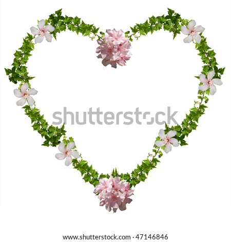 floral heart - ivy and oleander, isolated on the white background - stock photo