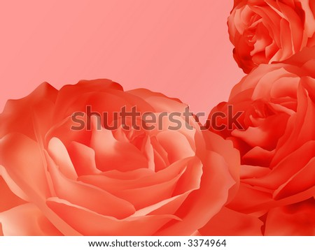 Floral rose red design - stock photo