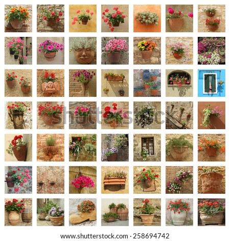 floral wall  - stock photo