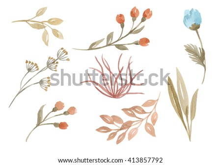 Floral watercolor set. Set of branches with buds and leaves, herbs, foliage on a white background. Watercolor hand drawn collection of delicate  field flowers - stock photo