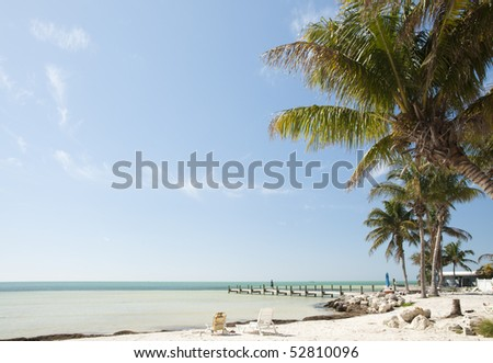 Florida keys beach landscape with sunbathing chairs, wooden pier and palm trees - stock photo