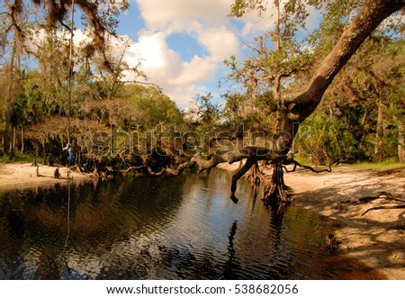 Florida landscapes of view of Fish Eating Creek in south central Florida / South Florida Nature