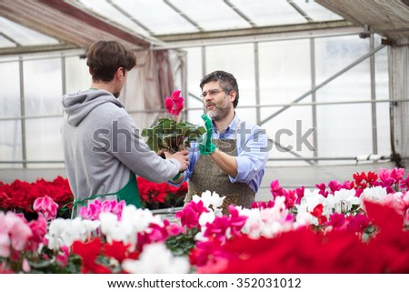 florist working in retail - stock photo