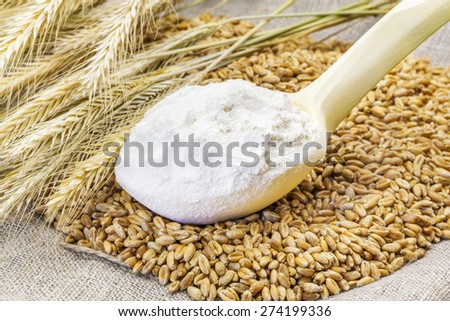 Flour in the wooden spoon with grains and ears