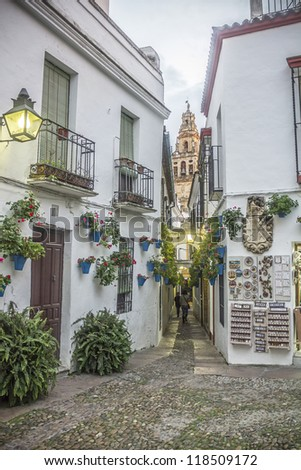 Flower Alley in Cordoba - Spain