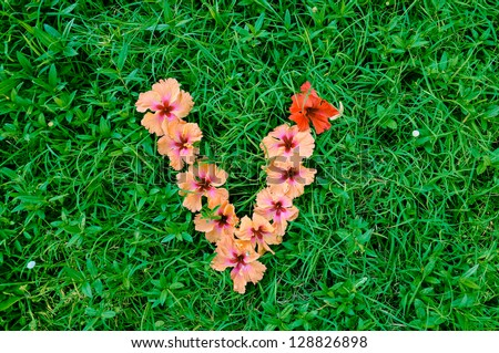 Flower alphabet letter v letters made stock photo 128826898 flower alphabet letter v letters made of flowers on green grass background altavistaventures Choice Image