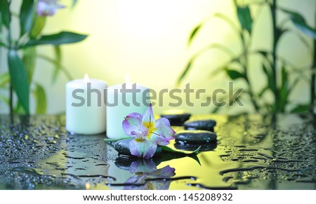 flower and burn candles on wet background - stock photo