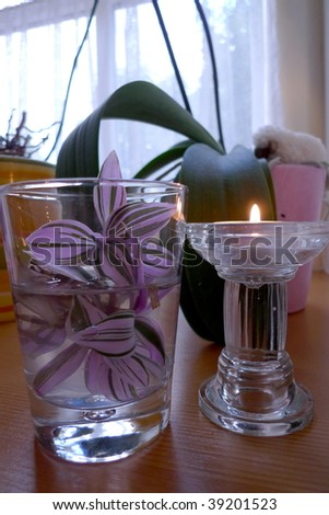 Flower and candle in the glassware. - stock photo