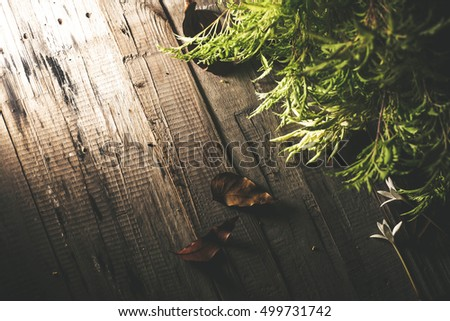 flower and dry leafs on the table wood the atmosphere so dark magic vintage background.