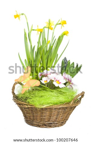 Flower and grass composition in a basket - stock photo