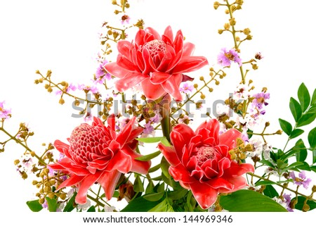 Flower arrangements with pink torch ginger flowers (Etlingera elatior (jack) R.M. Sm.) and - stock photo