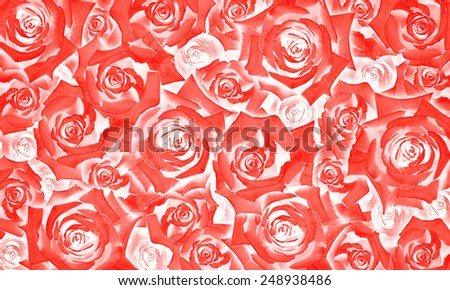 Flower background pattern of beautiful red rose buds - stock photo