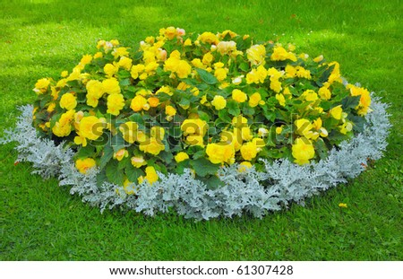 Flower bed and green grass - stock photo
