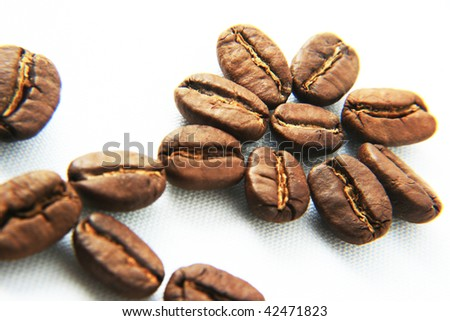 flower from cacao beans - stock photo