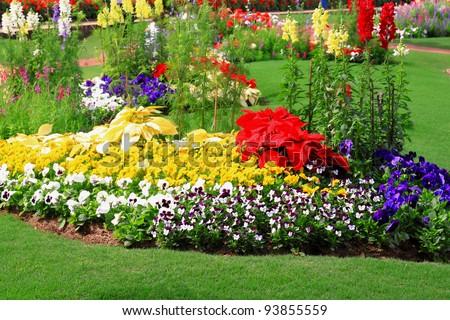 Flower Garden Background Stock Photo Shutterstock - Colorful flower garden background