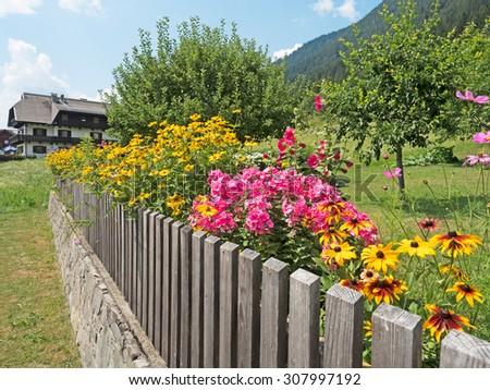 Flower garden in the Alps in summer - stock photo