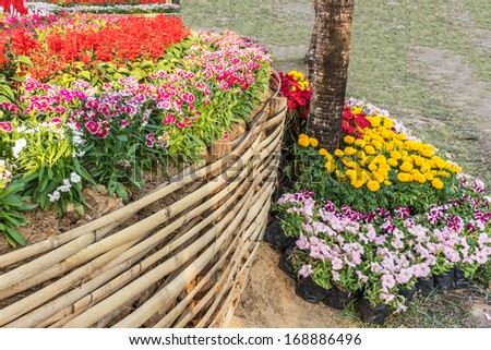 Flower garden on evening time at khonkaen,thailand - stock photo