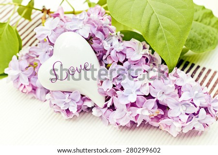 flower greeting card background for your text - love - stock photo